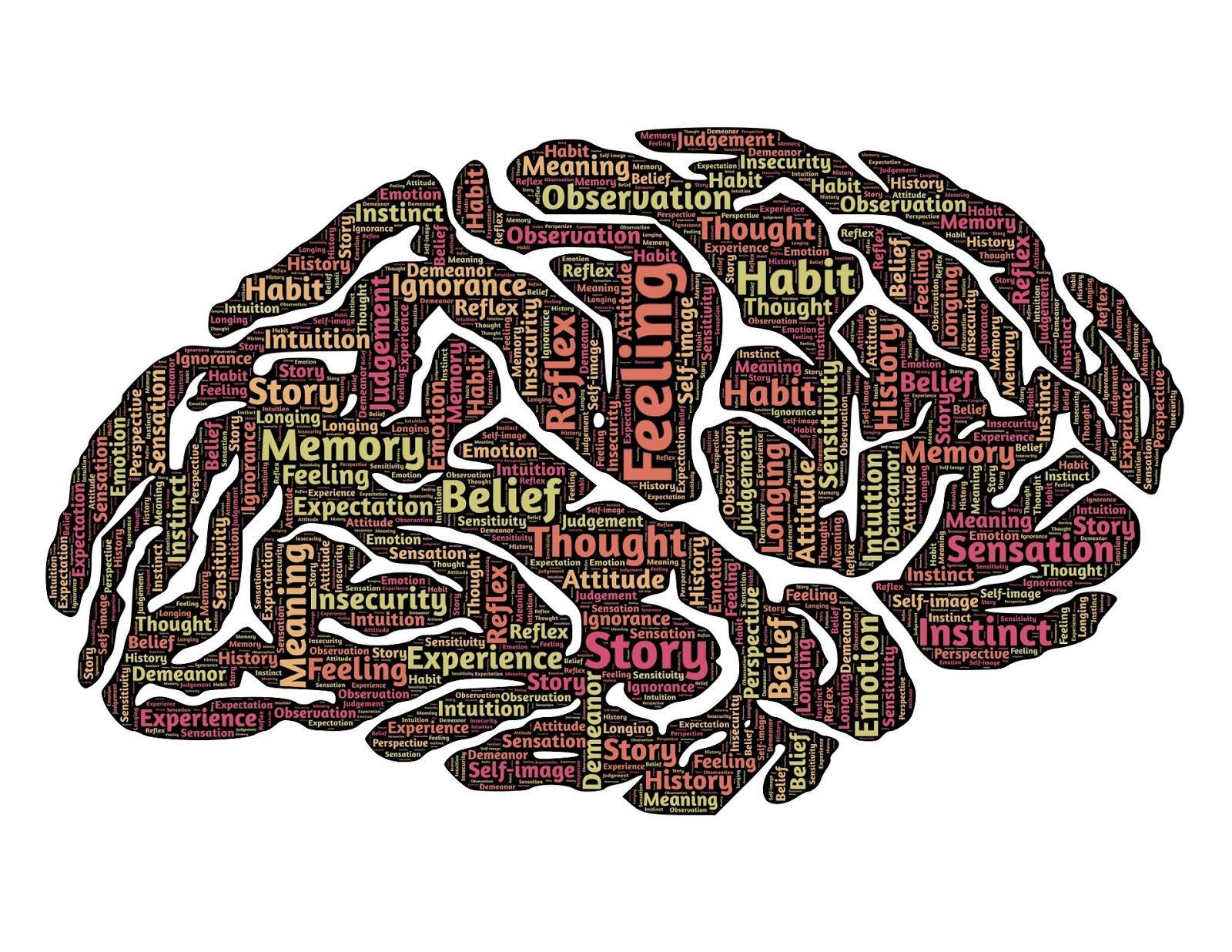 brain-544412_1920.jpeg